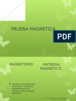 Prueba Magnetica