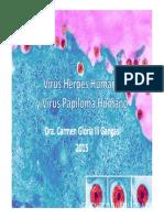 Virus Herpes Humano y Virus Papiloma Humano 2015
