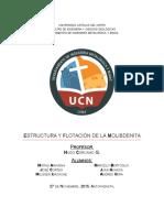 Estructura-y-flotación-de-la-Molibdenita.docx