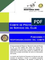 Comite Proyectos de Servicios