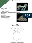 Developement _ Embryology