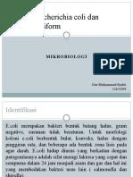 Bakteri Escherichia Coli Dan Kuman Coliform