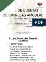 Disertacion Taller Apicola JC 2009-2