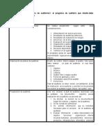 Elaboración Programa de Auditoria - Copia