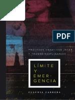 Límite y Emergencia. Procesos creativos inter y transdisciplinarios