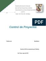 GERENCIA DE PROYECTOS D03.docx