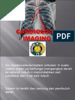 Cardiology Imaging.
