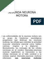 SEGUNDA NEURONA MOTORA