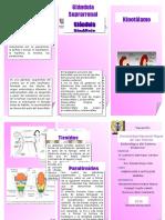 embriología del sistema endocrino