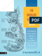 David Twicken - The Divergent Channels Jing Bie.pdf