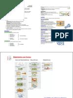 Gießen-Zusammenfassung.pdf