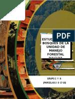 Índice de Valor de Importancia, gremios ecológicos, Unidad de Manejo Forestal Macuya.