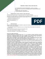 Memoriu Tehnic Rezistenta 22012015