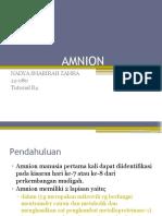 AMNION.pptx