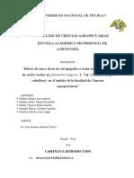 primer-avance-del-proyecto-del-frejol.docx