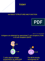 Lecture 6 Antibody Structure and Function1