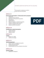 Programa Del Máster en Gestión de Proyectos