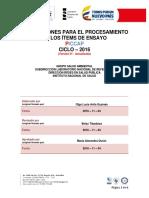 636142764106170943instrucciones Procesamiento de Items de Ensayo 2016