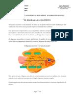 cusa efecto.pdf