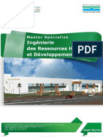 Master-IRH-DS.pdf