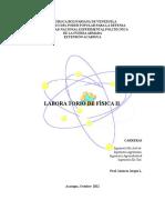 Practicas de Laboratorio de Fisica II (7 Prácticas)