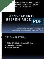 Sangramento Uterino Anormal e Amenorreia
