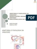 Anatomo-fisiologia Da Gravidez