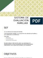 Sistema de Evaluación Familiar