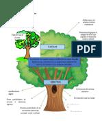 Árbol de Problema_y Objetivo_Diomer