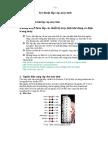 bai2laprapcaidat_ttth.pdf