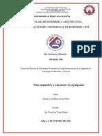 GRAVEDDA ESPECIFICA (Autoguardado)luzzz ok.docx