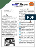 A METAMORFOSE - Prof. Jorge Alessandro - Análise