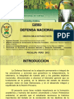 Presentacion de Defensa Nacional 2012 II (1)