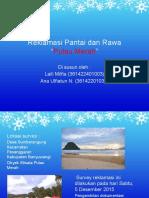 Reklamasi Pantai Dan Rawa