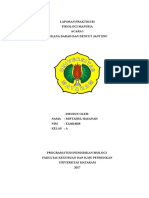 Laporan Praktikum Fisiologi Manusia Tekanan Darah Dan Denyut Jantung