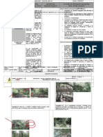 4 - Preventiva Ambiental Planchada LMS-X12 Rev3