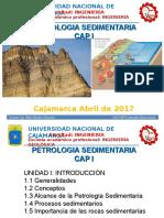 CAP I PETROSEDIM 17.ppt