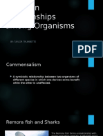 common relationships among organisms