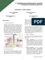 preinforme plantas termicas