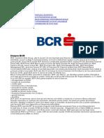 7.Proiect-SIE-BCR.docx
