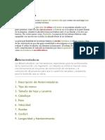 57102481-Partes-Componentes-de-La-Motoniveladora.doc