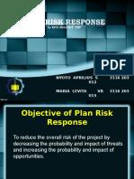 Plan Risk Response