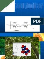 Metabolismul_Glucidelor (1)