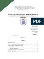 Monografia de La Sabila (2)