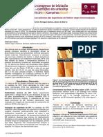 galoa-proceedings--pibic-2016-51420-estudo-da-estrut
