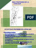Ecosistemas Pratenses 2015 de La Zona Sur II