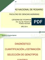 3 - Enfermedades Soja Foliares - Rosanna Pioli