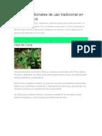 Plantas Medicinales de Uso Tradicional