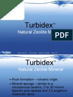 Turbidex  2009 ppt
