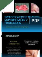Infección en Tejidos Superficiales y Profundos